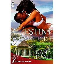 Destiny Awakened (Destiny African Romance #4)