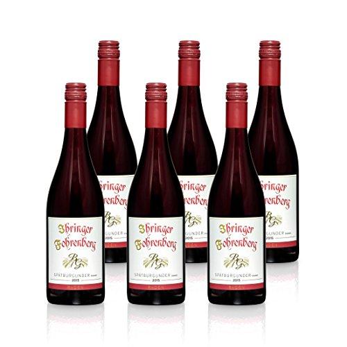 Spätburgunder - Ihringer Fohrenberg 2015 | Rotwein aus Deutschland | Trocken & Rot | WBK Glatt | Samtig & Kräftig im Geschmack (6x 0,75l)