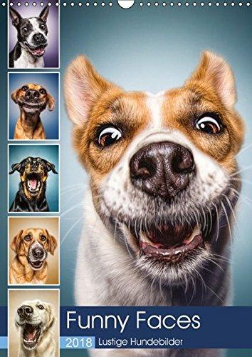 Funny Faces - Lustige Hundebilder (Wandkalender 2018 DIN A3 hoch): Herrliche Hunde-Gesichter mit einer Prise Humor. (Monatskalender, 14 Seiten ) ... [Apr 01, 2017] und Stefan Kulpa, Manuela
