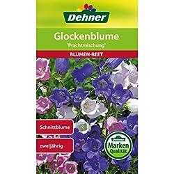 "Dehner Blumen-Saatgut, Glockenblume, ""Prachtmischung"", 5er pack (5 x 1 g)"