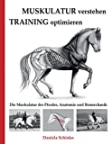 Muskulatur verstehen - Training optimieren: Die Muskulatur des Pferdes, Anatomie und Biomechanik