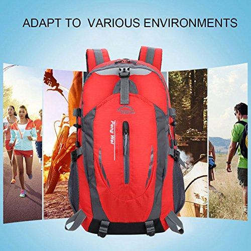 Yoome Zaino per escursioni 40L Weekend Pack Custodia antipioggia per laptop e scomparto per laptop - per campeggio, viaggi, escursionismo - verde Verde scuro