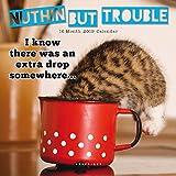 Nuthin but Trouble – Katzen 2019 - 16-Monatskalender (Wall-Kalender)