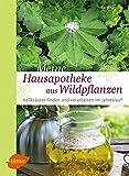 Meine Hausapotheke aus Wildpflanzen: Heilkräuter finden und verarbeiten im Jahreslauf