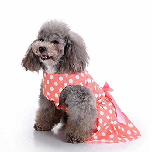 EgBert Vintage Polka Dot Pet Clothes Für Dog Dress Cat Vest Shirts - Xs