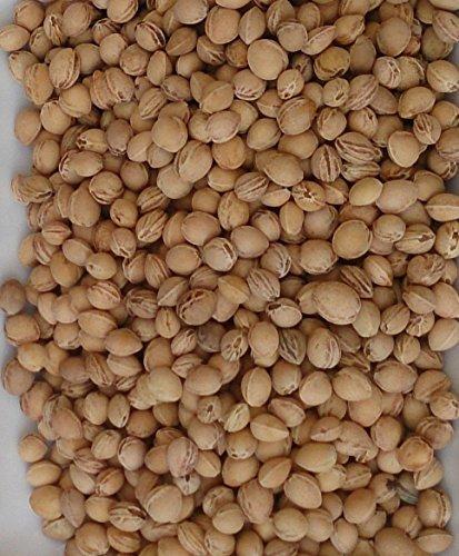 Eigenmarke - Huesos cereza relleno cojín 5kg