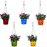#6: TrustBasket Dotted Round Planter with Hanging Wire Rope
