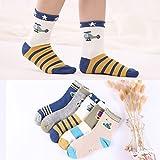 ZYTAN Kinder Socken, Socken, Baby Socken, 3-5 -7-9 Jahre alter Junge, dünne Reine Baumwolle Baby Socken, Hubschrauber, 3-5 Jahre (Empfohlen Fuß Länge 13-15 cm) 6 Paar