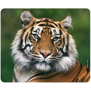 Speedlink SL-620300-WWF2 Terra WWF Mauspad aus: Amazon.de