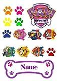 Paw Patrol Kuchenverzierungsset, personalisierbar, essbarer Zuckerguss, mädchen, Quadrat