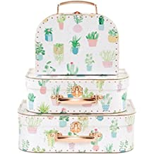 Set de 3 Cactus Pastel maletas