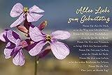 Schöne Geburtstagskarte Alles Liebe zum Geburtstag, Blume lila