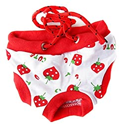 Small , Type A : CHIC*MALL New Healthy Female Pet Dog Puppy Sanitary Pant Short Panty Diaper Underwear (S, Type A)