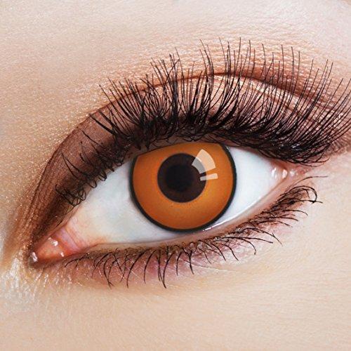 arbige Kontaktlinse The Brown Bunny   - Deckende Jahreslinsen für dunkle und helle Augenfarben ohne Stärke, Farblinsen für Karneval, Fasching, Motto-Partys und Halloween Kostüme ()