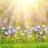 Coloc Photo 150x220cm printemps thème de pâques photo studio fleur fond la photographie toile de fond imprimé avec soleil et herbe D-9573