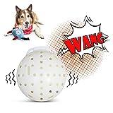 KSZ Hundespielzeug interaktiver automatisches Rütteln des Plüschshuttleballs...