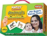 Krazy Common Animals - Flash Cards