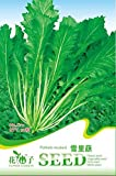 semillas de hortalizas de siembra de soja, soja vegetales verdes alrededor de 15 / pack