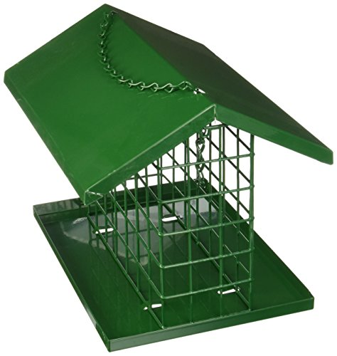 Bluebird-nuggets (C & S Produkte Easy Fill Deluxe Snak Futterball/Vogelfutterstation, mit Dach und Plattform)