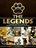 The Legends: Heartwarming Stories of 10 Most Heroic Dogs in History