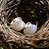 10pz Miniatura Gallina Pollo Decorazione Casa Delle Bambole Bonsai Giardino Paesaggio