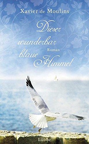 Dieser wunderbar blaue Himmel: Roman