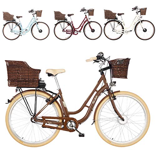 Fischer E-Bike Retro ER 1804