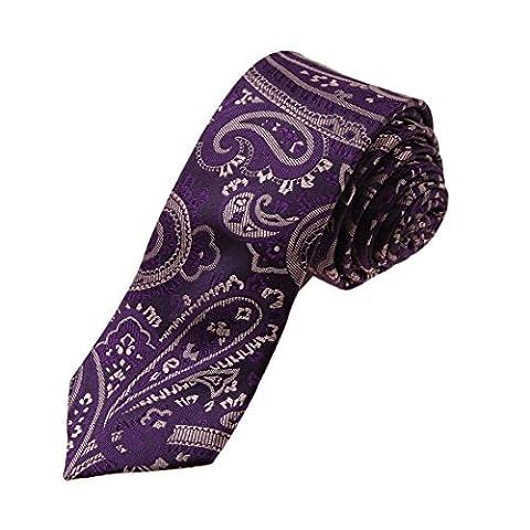YAEB0039 magenta fonc¨¦ Paisley Woven Jacquard de soie Maigre Cravate par Y&G