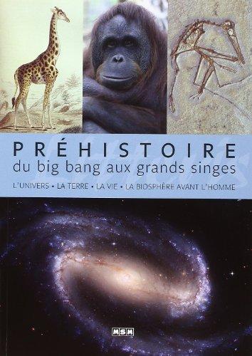 Préhistoire : du big bang aux grands singes