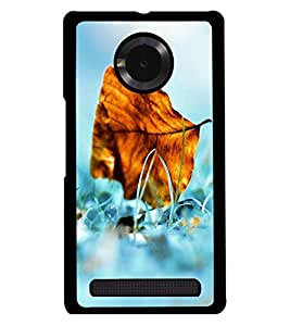 PRINTSWAG NATURES Designer Back Cover Case for MICROMAX YUPHORIA