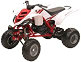 NewRay 42923A - ATV Honda Raptor 660R 1:12 - Blanc