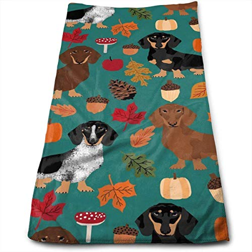 WBinHua Microfaser Handtücher, Sporthandtuch, Hand Towels, Dachshund Dog Autumn Pumpkin Leaves Kitchen Dish Towels with Vintage Design for Use in Kichen at Paties,Weddings,Dinners Or Events,12