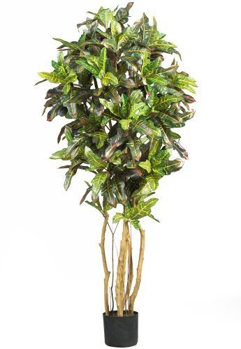Nearly Natural 5180 Croton Silk Tree, 5-Feet, Green by Nearly Natural