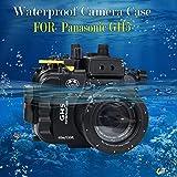Sea Frösche 130FT/40m Unterwasser Kamera Gehäuse Wasserdicht Fall für Panasonic GH5