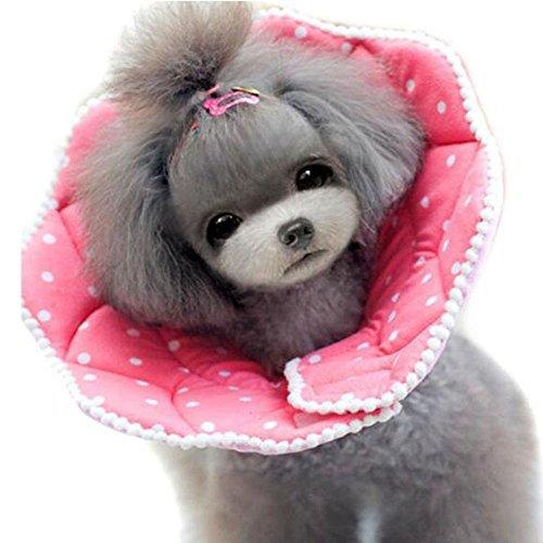 Bolbove Pink Dots Pet Weich & Stylisch Konus Recovery-für Hunde & Katzen, 5#