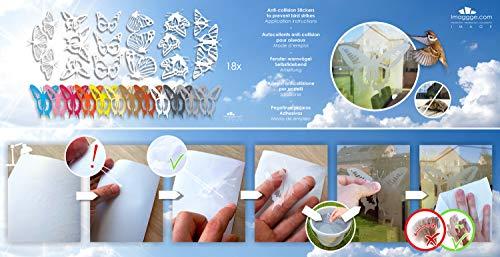 51cFLyBg1bL - imaggge.com - Pegatinas anticolisión para Puertas de Cristal (18 Mariposas detalladas) - Evita los Golpes de pájaros o choques de Personas en los Cristales