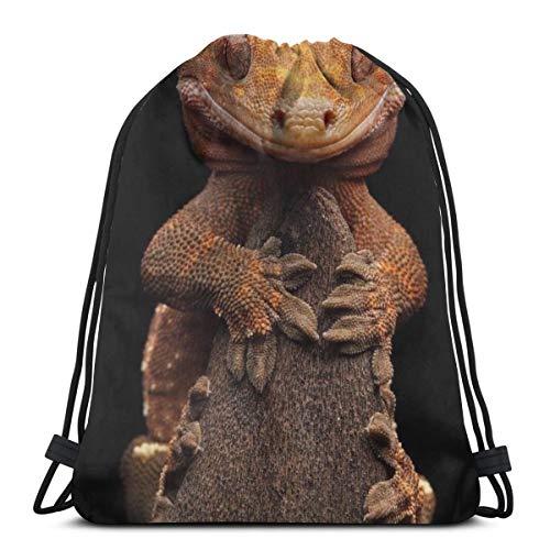 Bag hat Gecko Grasp The Rock 3D Print Drawstring Backpack Rucksack Shoulder Gym for Adult 16.9