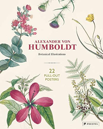 Alexander von Humboldt Botanical Illustrations: 22 Pull-Out Posters - Fine-art-tier-artwork