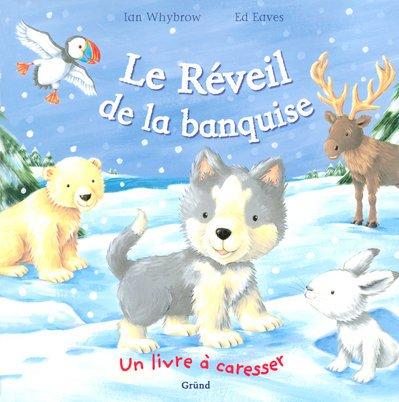REVEIL DE LA BANQUISE