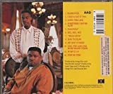 Ain't a damn thing changed (1991) - Nice & Smooth