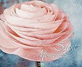 Silent Moments 2020: Großer Wandkalender. Foto-Kunstkalender Blumen und Stilleben. Querformat 55 x 45,5 cm