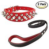 Newtensina Stilvoll Hundehalsband und Leinen Set Weich Nieten Hundehalsband mit Leinen für Kleine Hunde Mittlere Hunde