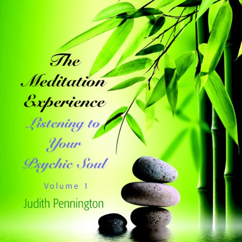 The Meditation Experience: Listening to Your Psychic Soul, Vol. 1  Audiolibri