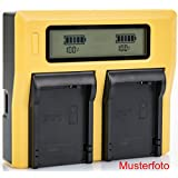 Bundlestar LCD double chargeur pour batterie Sony NP-FW50