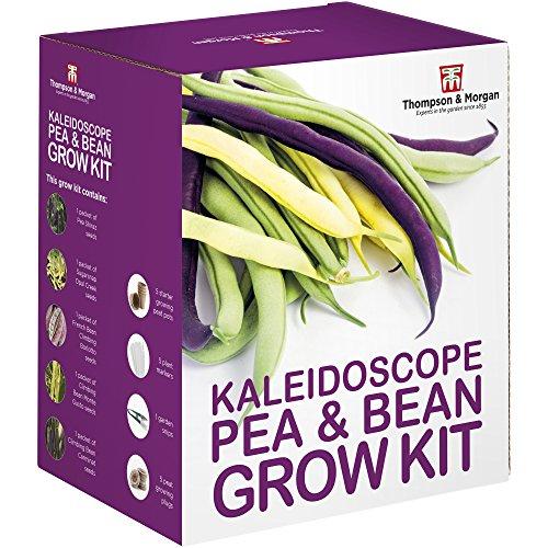 Kaleidoskop Pea und Bohne Samen Wachstums Set Geschenkbox von Thompson & Morgan – 5 Farbenreich kletternde Feldfrüchte to Grow ; Erbsen Schiraz,Zuckerschote,Prinzessin –