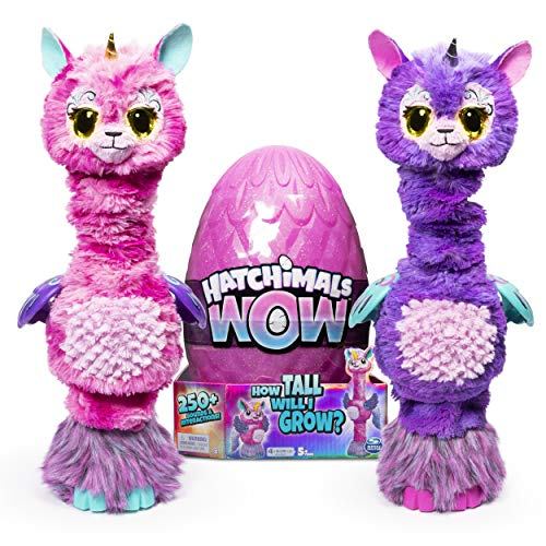 HATCHIMALS Egg HatchiWow GML, Multicolore, 6046989