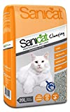 Clumping Cat Litters Review and Comparison