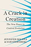 A Crack in Creation