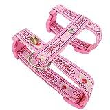 Queenly 4260466962649 Hundegeschirr Prinzessin, XS, rosa