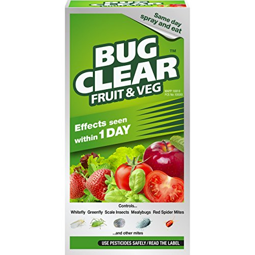 BugClear 019382 Insecticide, 250 milliliters
